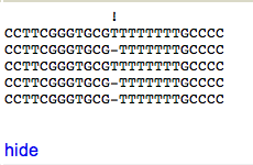 Showing the 10 nt alignment around a polymorphism. This is likely a homopolymer sequencing error.